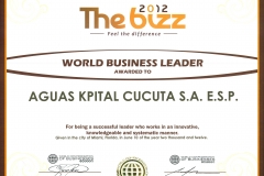 WORLD_BUSSINESS_LEADER_THE_BIZZ