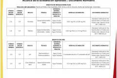 ACREDITACION-2_page-0004